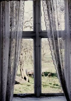 Old Window  Lace Curtains - I'm kinds obsessed with lace