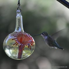 The Kennedy Style Hummingbird Feeder, The Original One Piece Drip-less Hummingbird Feeder on Etsy, $40.00