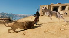 Screens, Camel, Animals, Canvases, Animales, Animaux, Camels, Animal, Animais
