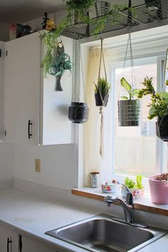 Window Shelf For Plants, Indoor Plant Shelves, Shelves With Plants, Shelf Over Window, Kitchen Window Shelves, House Plants Decor, Plant Decor, Ikea Plants, Household Tips