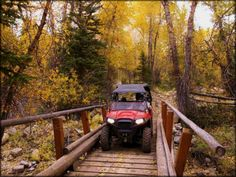 Road Trip To Colorado, Us Road Trip, Atv Riding, Trail Riding, Forest Scenery, Travel Center, Canyon Road, Mountain Trails, Trail Maps