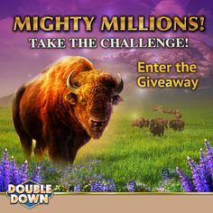 It's your last day to enter the Mighty Millions giveaway!  More information at…
