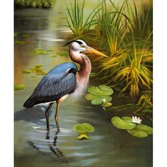 ON SALE! - Blue Heron - I - $56.99 - Cranes, Herons, and Storks - Hand Painted - Oil Paingings for Sale - Oil on Canvas - Cheap Canvas Art