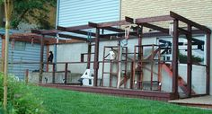 solution to a cat run- made of steel beams and wire mesh. - Tracy -one family's solution to a cat run- made of steel beams and wire mesh. - Tracy - Catio Playground More How to Tur Cat Run, Cat Mansion, Cat Habitat, Gatos Cat, Outdoor Cat Enclosure, Reptile Enclosure, Cat Playground, Outdoor Cats, Outdoor Play