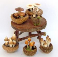scale Miniature Fairy Garden - Mushrooms and Toadstools in Acorn Top Pots. BY LORY. Fairy Garden Houses, Fairies Garden, Fairy Gardening, House Gardens, Container Gardening, Fairy Garden Furniture, Fairy Crafts, Fairy Garden Accessories, Fairy Doors