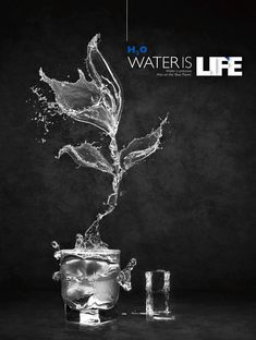 Water Is Life. Great and impactful advertisement with lively water flower. Water is precious, that's true. (Image source: Martin Grohs) Water Photo Manipulation: 28 Amazing Water Artworks
