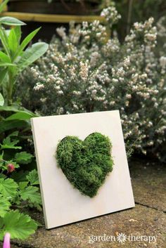 Moss Wall Art - This Moss Heart Wall Art is a 10 minute Project! Moss Wall Art, Moss Art, Wood Picture Frames, Picture On Wood, Spring Projects, Diy Projects, Art For Kids, Crafts For Kids, Trending Crafts