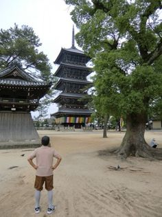 Man and Pagoda (Zentsū-ji, Japan)