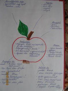 """Kiscsoportos projektek - """" Gyermekkorunk jelei ott maradnak életünk helyszínein, ahogy a virág illata is ott marad a szobában, amit díszített""""  - Chateubriand Kindergarten, Bullet Journal, Personalized Items, Projects, Apple, Kinder Garden, Kindergartens, Preschool"""