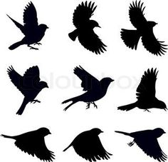 Sparrow Silhouette Flying Bird silhouette...