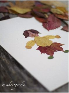 collage leaves <--I love this!    #fall #autumn #crafts