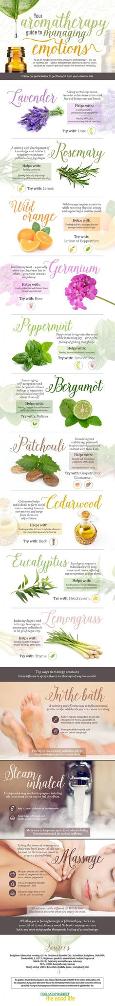 Renew your senses and disintegrate stress with the healing powers of Aromatherapy.