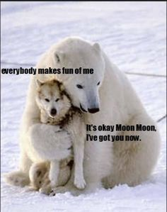 The story of emo wolf Moon Moon continues.