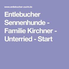 Entlebucher Sennenhunde - Familie Kirchner - Unterried - Start Entlebucher Mountain Dog, Puppys, House