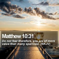 Matthew 10:31 Do not fear therefore, you are of more value than many sparrows. (NKJV)  #Wallpapers #Landscapes #HolyBible #MotivationalLockScreens http://www.bible-sms.com/