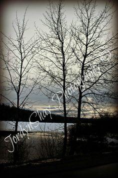 Blackwater Road, Lake, Living Water, Winter, Vanderhoof, BC, Canada by JordynShay Photography