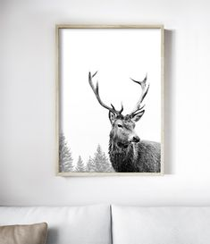 The Deer Print features a majestic deer in a misty woodland setting. Scandinavian Artwork, Design Scandinavian, Deer Wall Art, Art Wall Kids, Stag Animal, Antler Art, Poster S, Artwork Prints, Retail Therapy