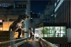 """""""Il était une fois une jungle urbaine peuplée de créatures sauvages d'un autre temps..."""" Voilà comment Benoît Lapray introduit sa nouvelle série photograph"""