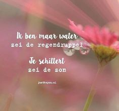 Image may contain: flower, plant, text and nature The Words, Cool Words, Positive Quotes, Motivational Quotes, Inspirational Quotes, Love Life Quotes, Best Quotes, How To Get Better, Dutch Quotes