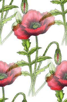 Květ pozadí 65 Plants, Blog, Blogging, Plant, Planets