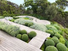 Cottage Garden Landscaping Weve compiled a collection garden styles to help get you started planning the garden youve always dreamed about. Casa Patio, Landscape Design Plans, Coastal Gardens, Backyard Landscaping, Landscaping Ideas, Backyard Ideas, Landscaping Melbourne, Landscaping Software, Patio Ideas