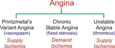 There are three types of angina: Printzmetal's variant angina, chronic stable angina, and unstable angina. All three forms are associated with a reduction in the oxygen supply/demand ratio.