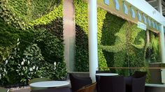 Consisting of over 8,000 plants of 32 different species, Edmonton International Airports Living Wall continues the trend of living vertical installations.