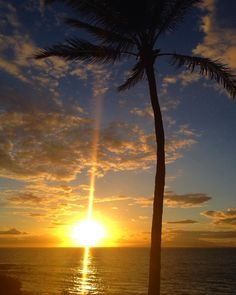 Aloha Friday from Maui  Where are you watching the sunset today? #hpsmaui
