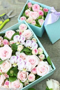Box Flower DIY Kit