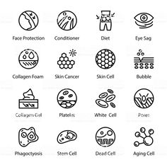This is a set of skin line vector icons. These vectors are designed. Free Vector Art, Vector Icons, Skin Line, Icon Pack, Image Now, Pattern Wallpaper, Royalty Free Images, Collagen, Icon Design