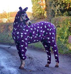 La moda llega a los caballos.