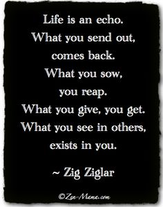 Zig Ziglar Quote Learn more at http://reflectionway.com