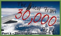 PART 3:  How does gut health impact PWN? And what does diet have to do with it all? Get the answers here in Part 3 of the series Diet for Narcolepsy: A Science-y View from 30,000 Feet (Part 3 - The Gut Connection).