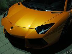 Lamborghini Aventador at local dealer Grand Opening. okokno.com