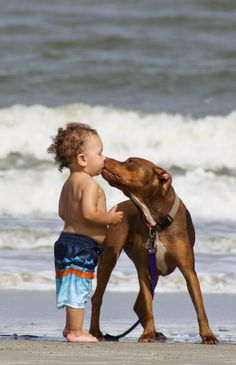 "Children and their  pets -- I love this..I think he is saying ""I love you so I won't let you get to close"" :)"