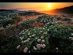 YouTube Mountains, World, Nature, Youtube, Plants, Travel, Naturaleza, Viajes, Destinations