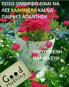 Good Night, Good Morning, Beautiful Pink Roses, Greek Quotes, Best Quotes, Diy And Crafts, Friday, Facebook, Education