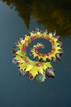 Maple and Dogwood leaves. Held together with water and thorns from a generous Hawthorne tree ~ Greenspirit Arts