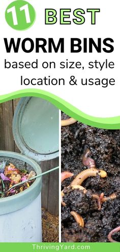 We review the best worm bins for vermicomposting, based on your Size, Style, Location, And Usage. Whether you starting a worm farm outdoors or need an indoor option for an apartment, want to teach your kids about the vermicompost process, or looking for the best all-around solution, you'll find a bin for your vermicompost needs here. #vermicomposting #wormcomposting #wormbins #wormfarm #composting Low Maintenance Landscaping, Landscaping Tips, Garden Landscaping, Small Gardens, Outdoor Gardens, Vermicomposting Bin, Worm Bins, Worm Farm, Worm Composting