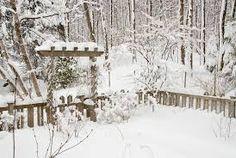 winter garden - Google Search
