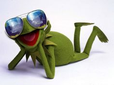 Get in style like Kermit! ;) check out the aviator section in the shop! https://www.monkeysunglasses.com/nl/styles/style/pilot/single