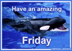 TGIF - Happy Friday Comments - Critical Layouts: Comments, Graphics & Animated Gifs