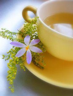 Lavender / Purple and Yellow / Cup of Tea Coffee Time, Tea Time, Café Chocolate, Pause Café, Cuppa Tea, My Cup Of Tea, Mellow Yellow, Color Yellow, High Tea