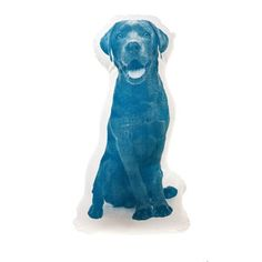 Mini Labrador Retriever Blue, $30, now featured on Fab.