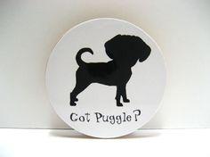 Got PUGGLE, Love it...