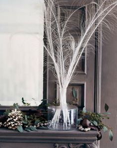 White peacock feathers make a light-catching tracery against the dark background | domino.com