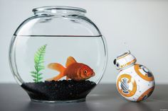 Star Wars Droid - BB-8 by Sphero
