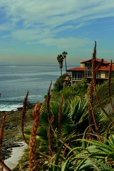 Del Mar, California by Pedruca
