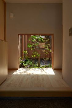 Indoor Gardens For Your Home Small Japanese House, Japanese Home Design, Japanese Home Decor, Japanese Interior, Minimalist Architecture, Japanese Architecture, Interior Architecture, Velo Design, Modern Small House Design