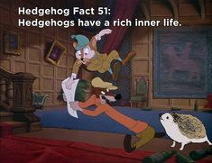 Twenty Incredible Hedgehog Facts That Will Astound You Hedgehog Facts, Introductory Paragraph, Hedgehogs, The Twenties, The Incredibles, Princess, Animals, Fictional Characters, Animales